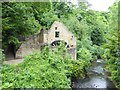 NZ2567 : The Old Mill in Jesmond Dene by Oliver Dixon