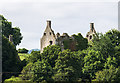 W5097 : Castles of Munster: Dromaneen, Cork (2) by Mike Searle