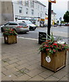 SS5533 : Flower tubs in The Square, Barnstaple by Jaggery