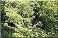 SH5573 : Viewpoint in Plas Cadnant Hidden Gardens by Jeff Buck
