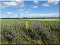 TL1942 : Langford Wind Farm by Marathon