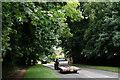 TQ2460 : Winkworth Road by Peter Trimming
