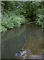 ST5763 : The Winford Brook at peace by Neil Owen