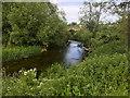 ST9268 : River Avon, Lacock Bridge by David Dixon