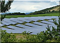 NO4025 : Wormit Solar Farm by Mat Fascione