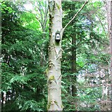 NO2307 : Nesting box, Lomond Hills by Bill Kasman