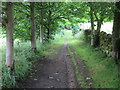 SE0536 : Bridleway from West Manywells to Coldspring Mill by Peter Wood