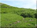 NR6653 : Cnoc nan Gobhar hillside by M J Richardson