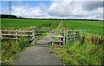 NO2604 : Gate on path to Purin Hill car park, Lomond Hills by Bill Kasman