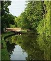 SP1867 : Lowsonford Lock by Derek Harper