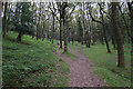 ST1538 : Path climbing out of Lady's Combe by Bill Boaden