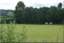 ST0007 : Cullompton : Grassy Field by Lewis Clarke