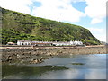 NT9561 : Partanhall from Burnmouth Harbour by M J Richardson