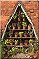 """SP1772 : """"Auricula theatre"""", kitchen garden, Packwood House by Derek Harper"""