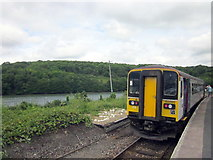 SX2553 : Looe Station by Roy Hughes