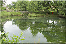 SK3160 : The Lower Pond Lumsdale by Malcolm Neal