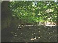 NZ0336 : Dry streambed, Bollihope Burn by Karl and Ali