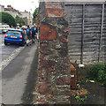 ST5773 : Cross-section of rubble wall, Gordon Road, Clifton, Bristol by Robin Stott