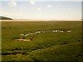 SD4379 : Salt  marsh  on  the  Kent  Estuary  from  train by Martin Dawes