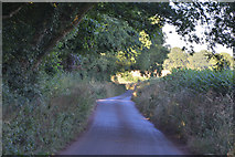 SS7401 : Mid Devon : Country Lane by Lewis Clarke