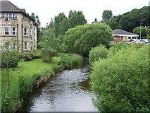NT2540 : Eddleston Water, Peebles by JThomas