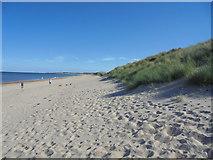 NZ2796 : Sand Dunes and Beach, Druridge Bay by Bill Henderson