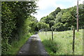 NY4501 : Footpath to Sawmill Cottage by Andrew Abbott
