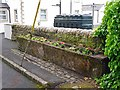 NY4887 : Old stone troughs planted with flowers by Rose and Trev Clough