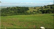 SO9740 : Castle Hill, Elmley Castle by Derek Harper