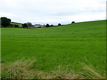 H6056 : Green fields, Carran by Kenneth  Allen