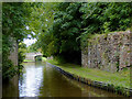 SJ3332 : Llangollen Canal east of Hindford in Shropshire by Roger  Kidd