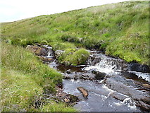 SH9420 : Small cascade on the Hirddu Fach by Richard Law