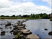 SE0063 : Stepping stones over the River Wharfe by Graham Hogg