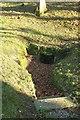 SX0878 : Holy well, Michaelstow churchyard by Derek Harper