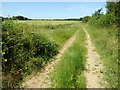 SP1304 : Field headland track by Philip Halling