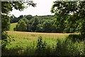 SX8777 : Ugbrooke Park by Derek Harper