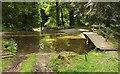 SX8778 : The Watersplash, Ugbrooke Park by Derek Harper