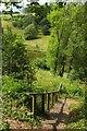 SX8778 : Steps on path above Higher Water by Derek Harper