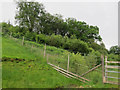 NN1530 : Deer fence around regenerating woodland by Hugh Venables