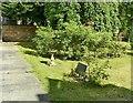 SK3446 : Babington Hospital, Diana, Princess of Wales Rose Garden by Alan Murray-Rust