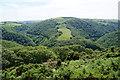SS7449 : Hillside above Horner's Neck Wood by Bill Boaden