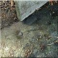 SK3745 : Rivet bench mark, Church Street, Kilburn by Alan Murray-Rust