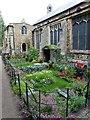 TF4609 : Wisbech in Bloom 2017 - 50 Years of Gardener's World by Richard Humphrey