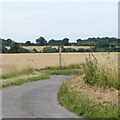 TM4787 : Footpath Signpost near Marsh Lane Farm, Mutford by Roger Jones