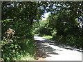 SW7128 : Minor road towards Constantine by JThomas