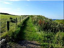 C9844 : Coastal path, Feigh by Kenneth  Allen