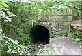 SO9403 : The Daneway Portal of the Sapperton Tunnel by Russel Wills