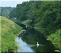 TF6117 : River Nar towards King's Lynn by Mat Fascione