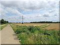 TL5060 : Near Honey Hill in July by John Sutton