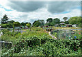 TF9914 : Dereham Allotment Gardens by Mary and Angus Hogg